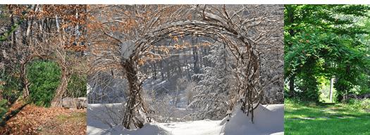 InnerFire_Seasons